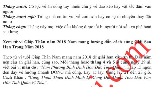 giap-than-nam-mang-2004-4